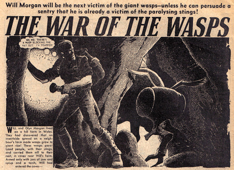 The War of the Wasps by Edmond