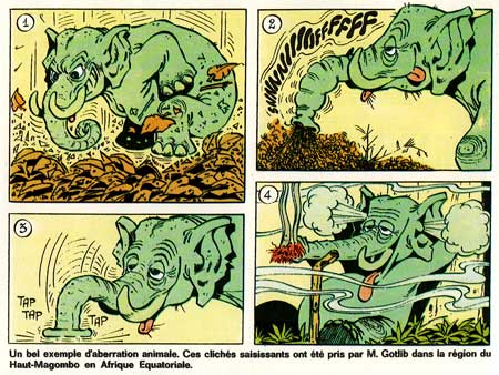 Lob de la Jungle by Gotlib