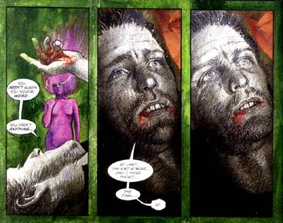 Black Orchid, by Dave McKean 1991