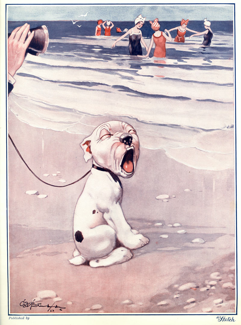 The Studdy Dog, by George E. Studdy