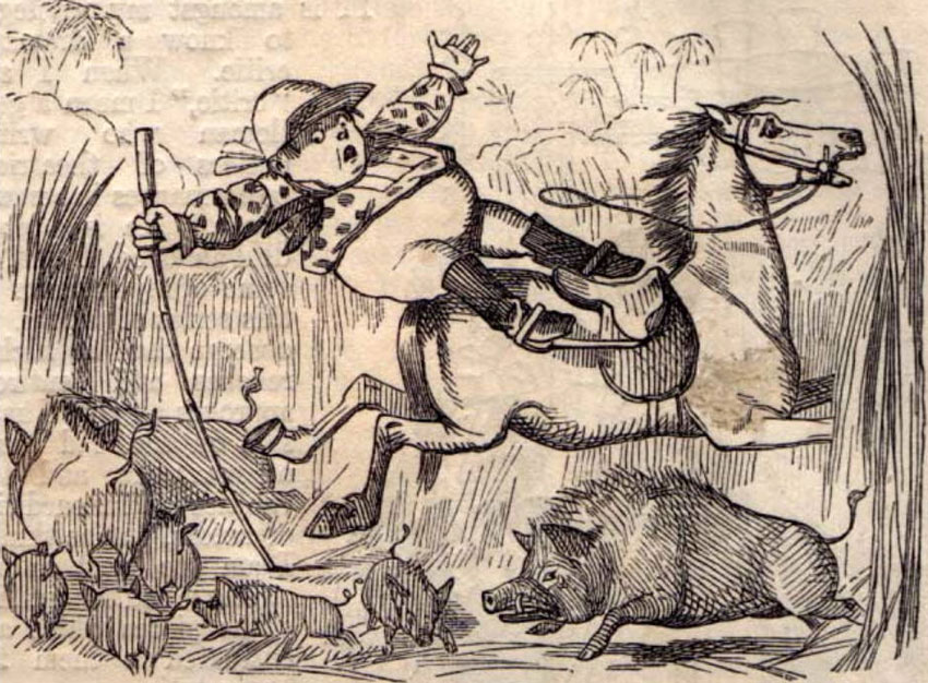 Mr Piper, by John Tenniel (1853)