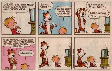 Calvin and Hobbes, by Bill Watterson