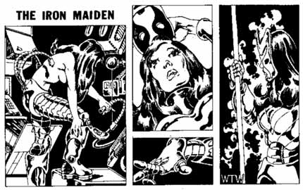 Iron Maiden, by Bill Willingham